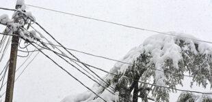 В Украине будет ветрено, в некоторых областях мокрый снег