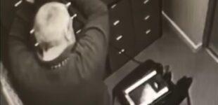 В США задержали грабителей, укравших из банковских сейфов в Украине десятки миллионов долларов