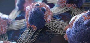 «Три главных сигнала»: онколог назвал очевидные предвестники рака