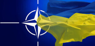 Зеленский надеется на обсуждение 14 июня перспективы членства Украины в НАТО