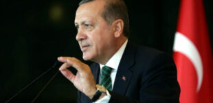 Турецкая вакцина от COVID будет готова уже осенью, — Эрдоган