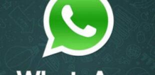 WhatsApp в РФ грозит штраф до 6 млн рублей за отказ локализовать данные россиян