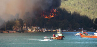 Пострадавшие от пожаров регионы Турции объявили зоной бедствия