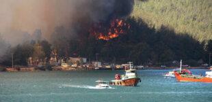 Число жертв лесных пожаров в Турции продолжает расти